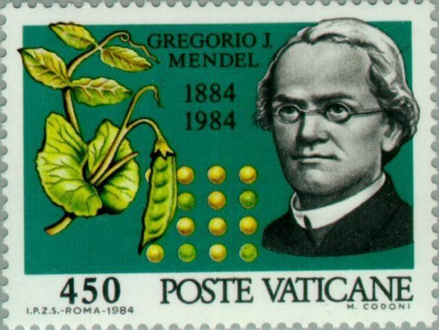 """دولة الفاتيكان """"الدينية"""" أصدرت طوابع لذكرى غريغور ماندل وتجاربه في في تكاثر نبات البازلاء"""