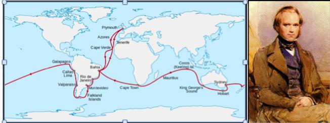رحلته على متن السفينة البيجل Beagle الإستكشافية حول العالم وهو في سن 22 سنة كانت فرصة ثمينة له لصقل معرفته في مجال الطبيعة. نشرملاحظاته والنتائج التي توصل إليها في كتاب (رحلة السفينة بيجل)، الذي أكسبه سمعة علمية جيدة قبل نشر أعماله حول التطور. وحصل في 1853 علي وسام الجمعية الملكية والتي أكسبتة شهرته كعالم أحياء وجيولوجيا.
